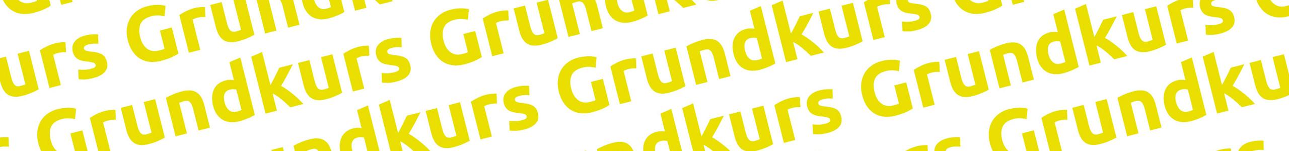 Grundkurs – AZPP
